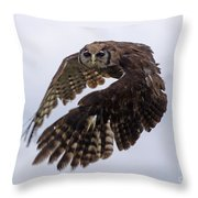 Birds 48 Throw Pillow