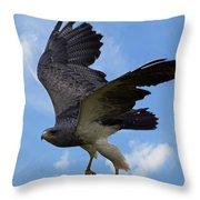 Birds 49 Throw Pillow