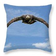 Birds 60 Throw Pillow