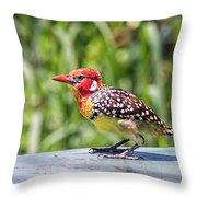 Birds #62 Throw Pillow