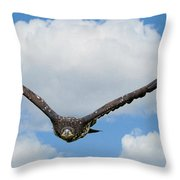 Birds 65 Throw Pillow