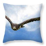 Birds 67 Throw Pillow