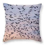 Birds A Flock Of Seagulls Throw Pillow