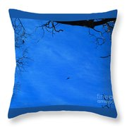Birds Aloft In The San Bernardino Mountains Throw Pillow