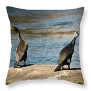 Birds And Lake Throw Pillow