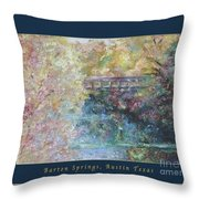 Birds Boaters And Bridges Of Barton Springs - Autumn Colors Pedestrian Bridge Greeting Card Poster Throw Pillow