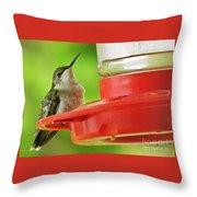 Female Ruby-throated Hummingbird Throw Pillow