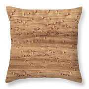 Birds-eye Pattern On Sugar Maple Wood Abstract In Nature Throw Pillow