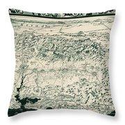 Birds-eye View Of California Throw Pillow