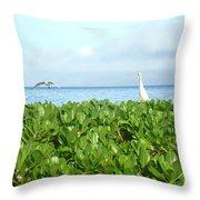 Bird's-eye View Of Hawaii Throw Pillow