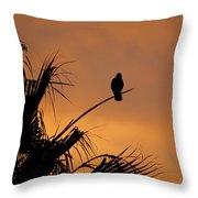 Birds Eye View Photograph Throw Pillow