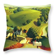 Birds Eye View Throw Pillow by Robin Moline
