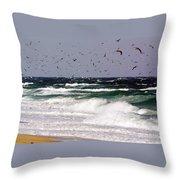 Birds Feeding Frenzy Throw Pillow