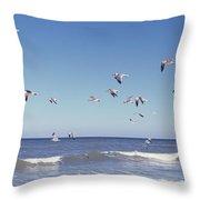 Birds Flying Over The Sea, Flagler Throw Pillow