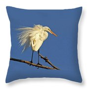 Birds - Great Egret Throw Pillow