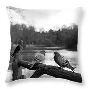Birds I Throw Pillow