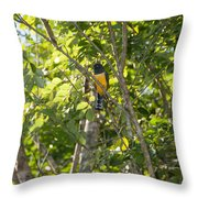 Birds Inside The Coba Ruins Throw Pillow