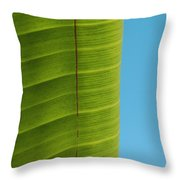 Birds Leaf Throw Pillow