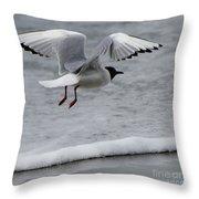 Birds Of A Feather 5 Throw Pillow