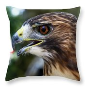 Birds Of Prey Series Throw Pillow