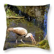 Birds Of The Everglades Throw Pillow