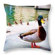 Birds Of The River Throw Pillow