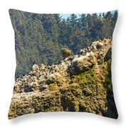Birds On The Rocks Throw Pillow