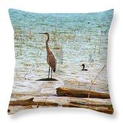 Birds Reflections Throw Pillow