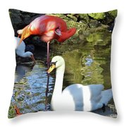 Birds Together Throw Pillow