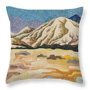 Birdseye Landscape #5 Throw Pillow