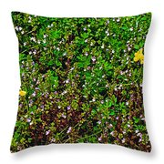 Birdsfoot Trefoil Surrounded By Tiny Bright Eyes In Campground In Saginaw-minnesota Throw Pillow