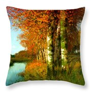 Birken Am Moorgraben 1896 Throw Pillow