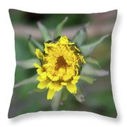 Birth Of A Dandelion Throw Pillow