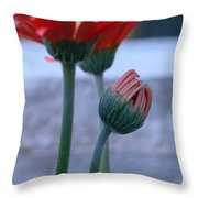 Birth Of A Flower Throw Pillow