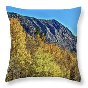 Bishop Creek Mountains Throw Pillow