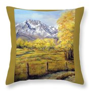 Bishop In The Fall Throw Pillow