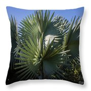 Bismarckia Throw Pillow