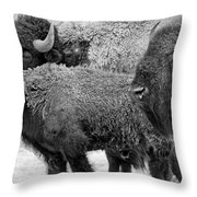 Bison - Way Out West Throw Pillow