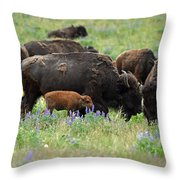 Bison And Lupine Throw Pillow
