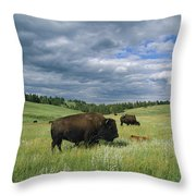Bison And Their Calves Graze In Custer Throw Pillow