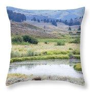 Bison At Slough Creek Throw Pillow