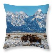 Bison At The Tetons Throw Pillow