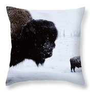 Bison Bison Bison In The Snow Throw Pillow