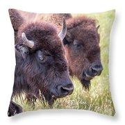 Bison Closeup View Throw Pillow