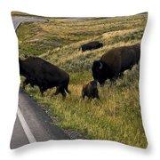 Bison Disrupting Traffic Throw Pillow