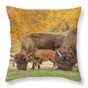 Bison Family Nation Throw Pillow