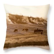 Bison Firehole River Yellowstone Throw Pillow