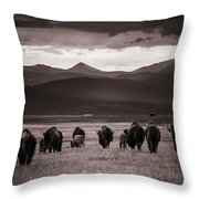 Bison Herd Into The Sunset - Bw Throw Pillow