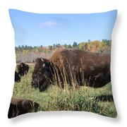 Bison Home On The Range Throw Pillow