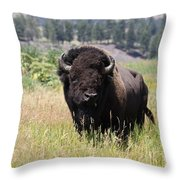 Bison In Grass Throw Pillow